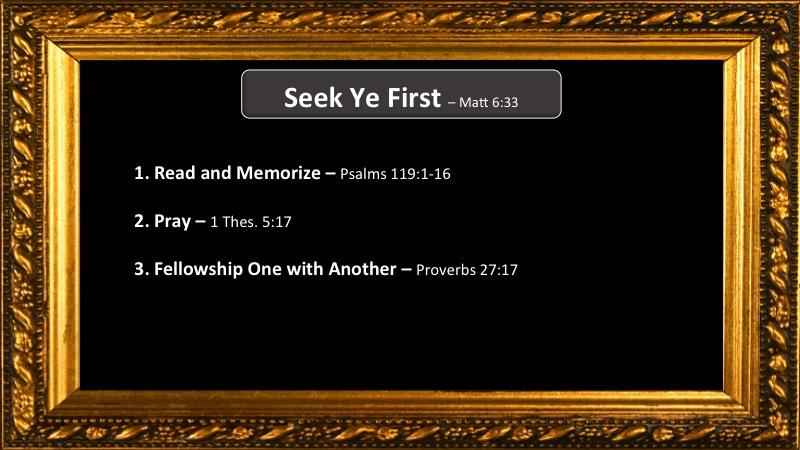 Seek-First-Reeder-2